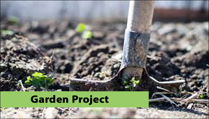 nottingham and notts refugee forum garden project